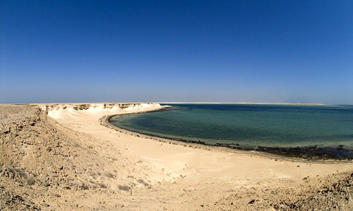 Red Sea Governorate to Offer 100 Acres in Public Land Tender