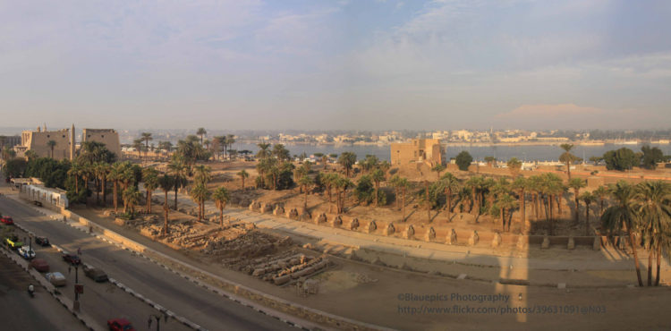 Investors Request to Build 45 Factories in Luxor