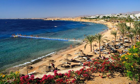 20,000 SQM of Land Allocated for Public Services in Sharm El Sheikh