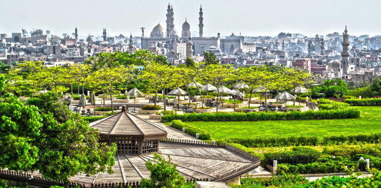 Oases in the Dust: Investing in Cairo's Green Spaces
