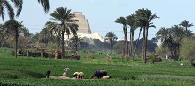 Four Land Plots to be Offered in Beni Suef