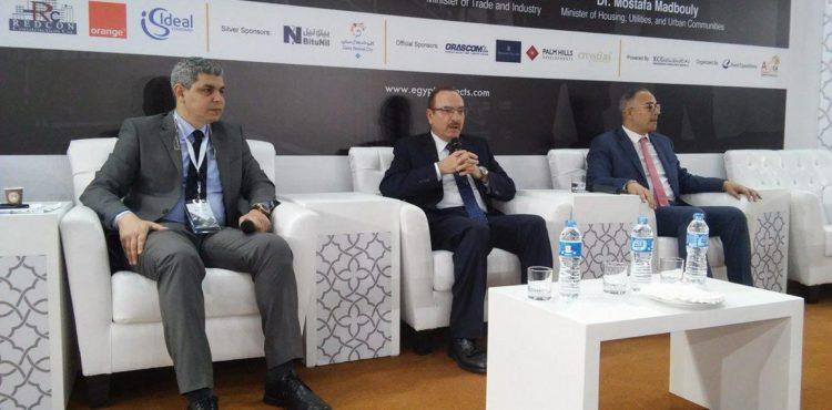 Upper Egypt Seen 'Promising' Amid Major Developments