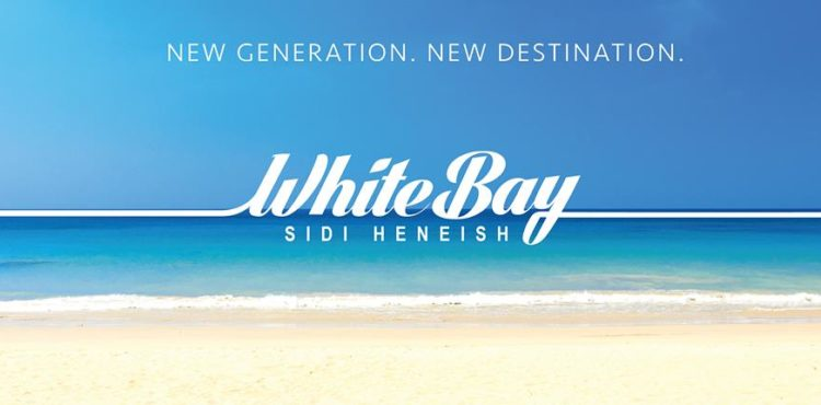 Pact Uncovers White Bay's Latest Updates