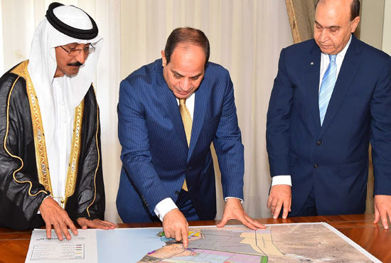 Sisi Approves Joint Company Between DP World, SCZone Authority