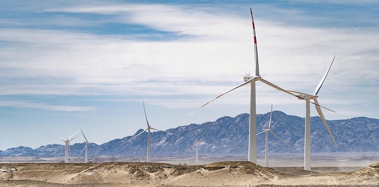 Ras Ghareb's 250 MW Windfarm Supplies Power to Grid: Orascom