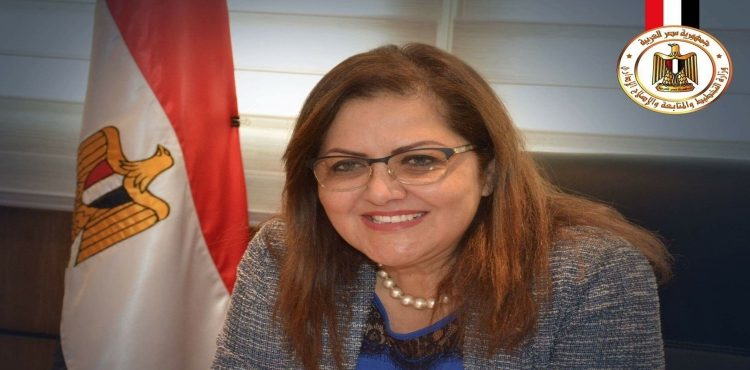 Gov't Builds Almost EGP 96 bn Energy Projects in 2 Yrs: Minister